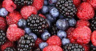 dieta_cu_fructe_de_padure_click