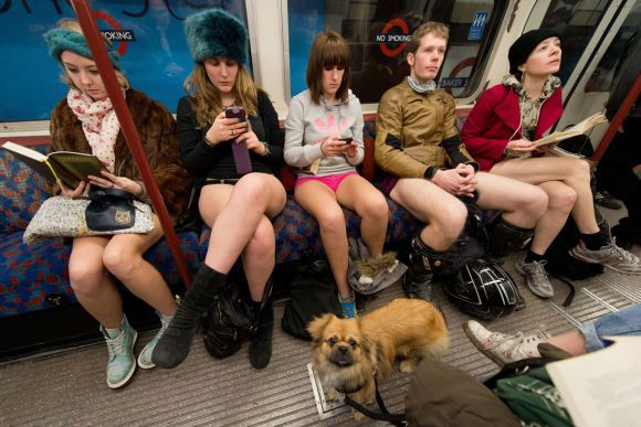 """A dog looks on as participants in the 13th annual International """"No Pants Subway Ride"""" travel on a London underground train in London, on January 12, 2014. Started in 2002 with only seven participants, the day is now marked in over 60 cities around the world.  The idea behind """"No Pants"""" is that random passengers board a subway car at separate stops in the middle of winter, without wearing trousers. The participants wear all of the usual winter clothing on their top half such as hats, scarves and gloves and do not acknowledge each other's similar state of undress. AFP PHOTO/LEON NEALLEON NEAL/AFP/Getty Images ORG XMIT:"""