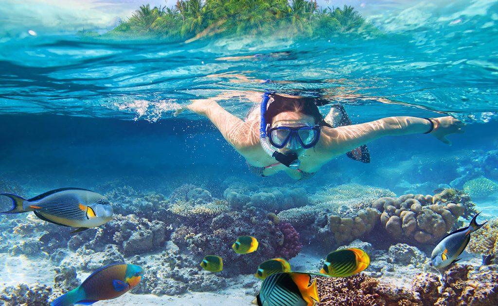snorkelling_1